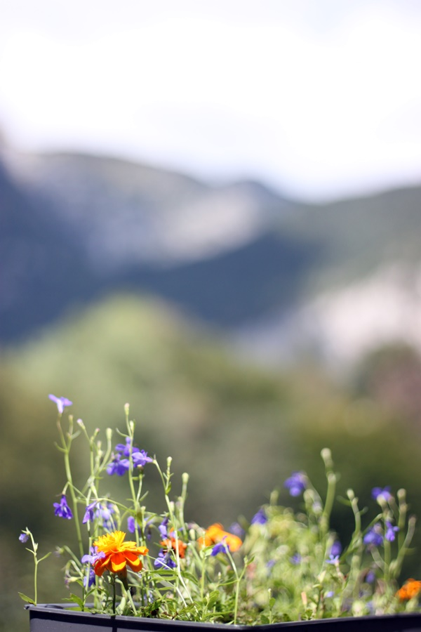 il Furletto ristorante - Magical Mountain Camping In Northeastern Italy