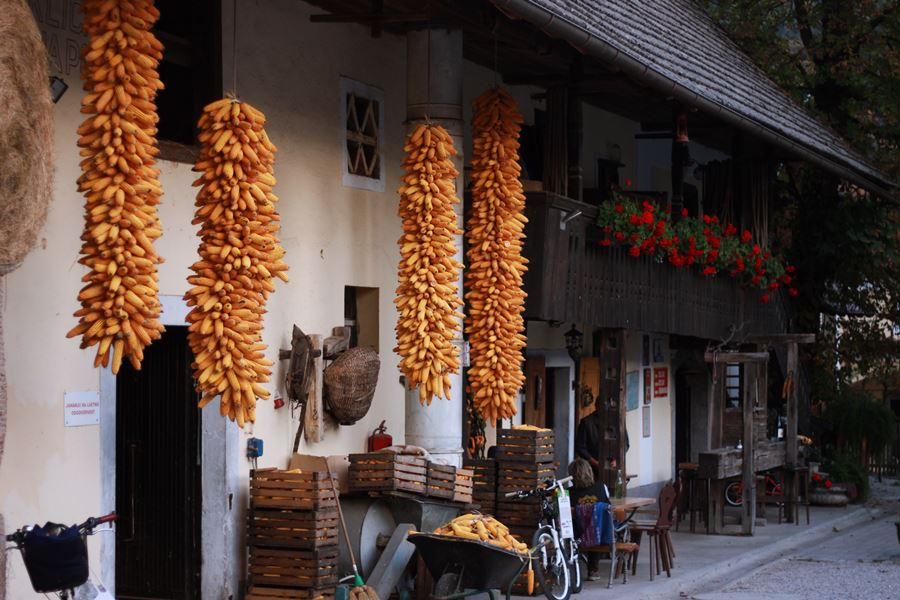 Drying corn at Pr' Krač Homestead in Slovenia