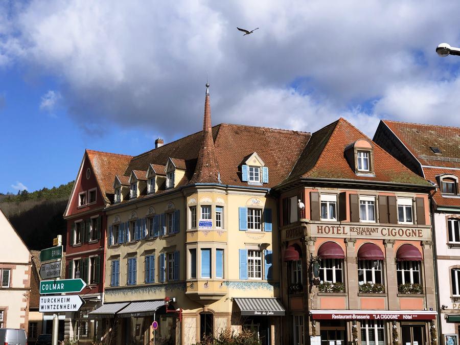 Stork flying in Munster, France - exploring Munster and finding storks