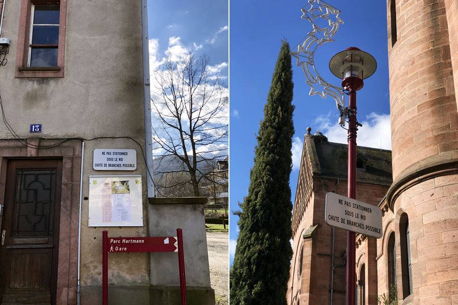 Signs warning of falling sticks from stork nests in Munster, France - exploring Munster and finding storks