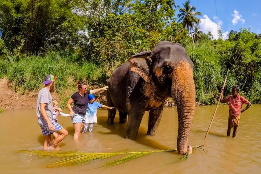 Unschooling family at the Elephant Freedom Project in Sri Lanka - Family Backpacking Adventure Life Change
